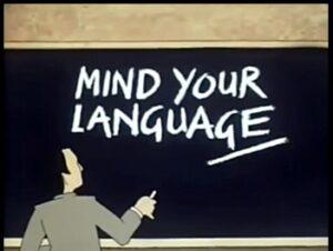 mind your language MAS Management