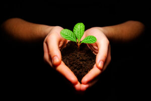 Plant sustainability not just business
